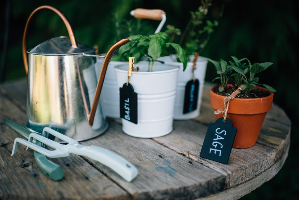 3 Steps to your own herb garden
